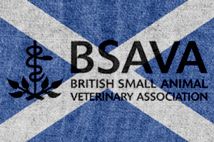 The 26th annual BSAVA Scottish Congress will take place from August 26-28 at the Edinburgh Conference Centre.