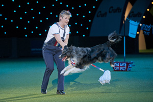 The Kennel Club has made changes to its regulations for heelwork to music - seen here at Crufts earlier this year