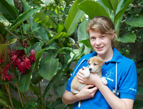Emily Jeanes received a £500 grant to investigate the zoonotic risk posed by Toxocara canis infection in dogs in Sri Lanka.