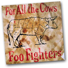 For All The Cows, the third single taken from the Foo Fighters' epoymous debut album.