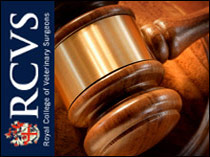RCVS disciplinary committee  postpones judgement on Hampshire vet