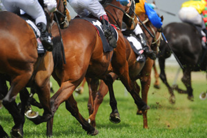 Jockeys face harsher penalities for misuse of the whip.
