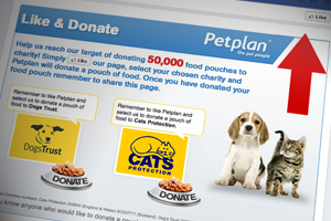 Petplan's Like & Donate campaign wins Insurance Times award