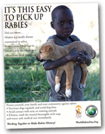 World Rabies Day awareness poster