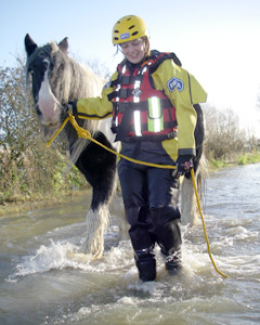 Braving the floods - RSPCA inspector Michelle McNab leads a horse to safety.