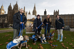 Staffies and their owners kick start the campaign outside Parliament yesterday (Nov 24, 2011)