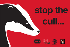 RSPCA's Stop the Cull campaign banner.