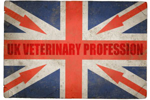 The RCVS, BVA and Veterinary Defence Society have teamed up to introduce overseas vets to the profession in the UK