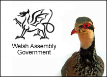 Welsh Assembly Government gamebird code