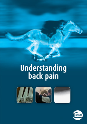 Ceva's leaflet helps horse owners understand back pain