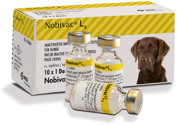 Nobivac L4 launched by MSD Animal Health.