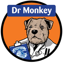 The inimitable Dr Monkey