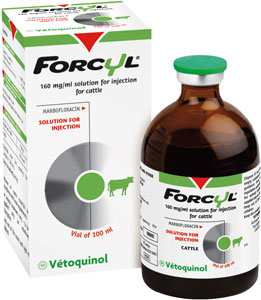 Forcyl, an innovative injectable anti-infective for the targeted therapeutic treatment of respiratory infections in cattle.