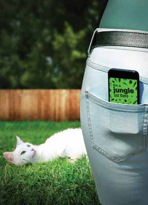 Bayer's Jungle for Pets app, available on iPhone and iPad.