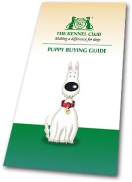 Puppy Buying Guide