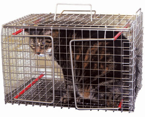 The first cat cage that can be properly sterilised after use.
