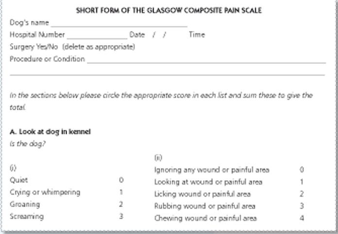 glasgow coma scale chart pdf